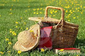 picknickmand  5